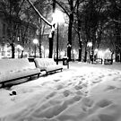 Snow in the park by Antonello Mariani