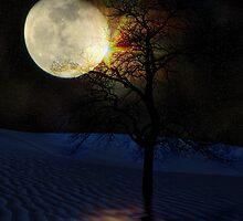 Reflections Of An Alien Eclipse by digitalmidge