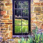 Side window, Lavender Fields Cottage by Elana Bailey