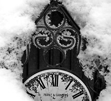 Time Frozen by James  Birkbeck