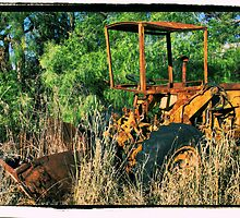 old international  front end loader by dmaxwell
