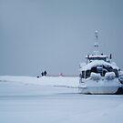 Frozen boat by Bluesrose