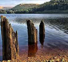Derwent Reservoir by SIMpixels