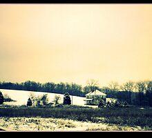 A Winter Solstice Walk VI by mousepotato66