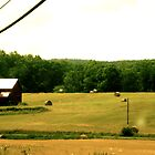 Picture Perfect Farm by BeccaAlysse