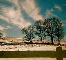 Where The Wind Blows by LinnyRett