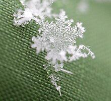 Snowflake III by CJ B