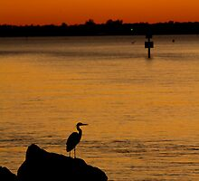 Fishing at Last Light by PGornell