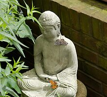 Budda and Friends by Corkle