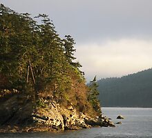 Sea, Land & Time MAYNE ISLAND by TerrillWelch