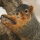 Eating Snow by lorilee