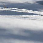 White Landscape by genlloyd