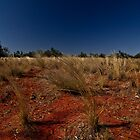 Red Earth, Blue Sky Country by wolfcat