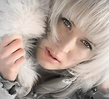 Silver Winter by VioDeSign