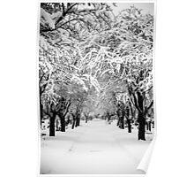 Deep Snow Poster