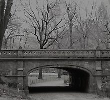 Central Park Bridge, NYC by Henri Irizarri