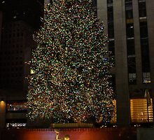 Rocker feller Christmas Tree, NYC by Henri Irizarri