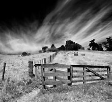 The Gate to the Westerly by Peter Denniston