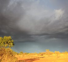Storm Clouds in the Outback by Jillian Holmes