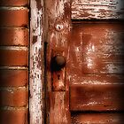 Weathered Door by Kristine McKay Kinder