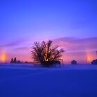 Winter Rainbow by maragoldlady