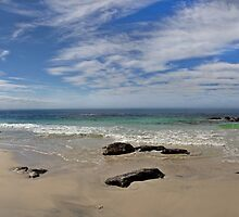 Beach panorama by Richard Majlinder