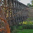 Pyalong Rail Bridge #2 by mspfoto
