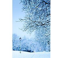 Narnia?! Photographic Print