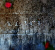 Superimposed Sorrow by Adrena87