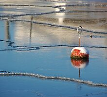 Ice Bouy by vanStaffs