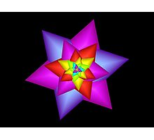 Star Flower Photographic Print
