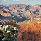Grand Canyon Overlook by Gregory Ballos | gregoryballosphoto.com