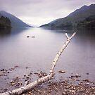 Loch Shiel by PigleT