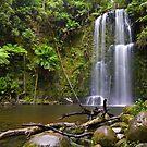 Beauchamp Falls by Matt  Streatfeild