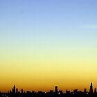 Chicago Skyline by Erik Holladay