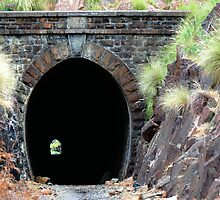 old railway tunnel by nadine henley