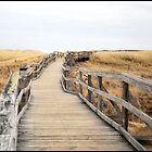 The Boardwalk by George's Photography