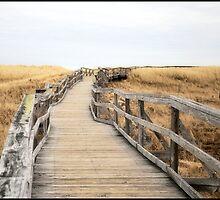 The Boardwalk by GGleason