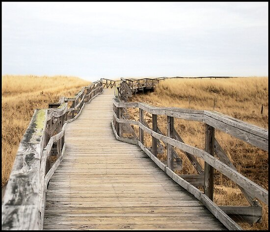 The Boardwalk by GGleason