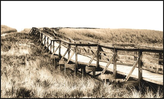 The Straight And Narrow by GGleason