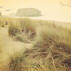 Vintage dunes by SylviaCook