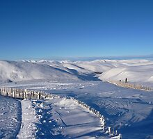Ski Trails in Glenshee by Braedene
