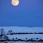 Blue Moon at Powmill.... by DoreenPhillips