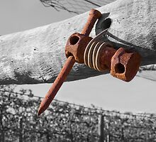 Old wire strainer by Terry Marter