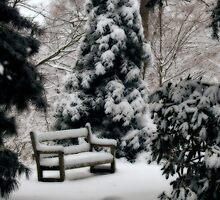 Dreamy Winter's Bench by Monica M. Scanlan