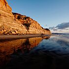 Torrey Pines Cliffs by Michael Chong