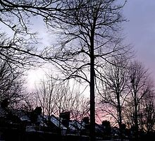January Sunset in Greenwich by Karen Martin IPA