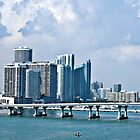 Miami Beach Skyline by robert cabrera
