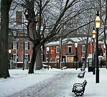 Salem Commons in Winter II by Monica M. Scanlan