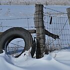 "Snow Tire ""d"" by mnkreations"